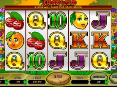 Juices Wild freeslots-77.com OpenBet 1/5
