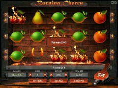 Burning Cherry freeslots-77.com Gamescale 4/5