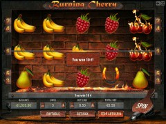 Burning Cherry freeslots-77.com Gamescale 5/5