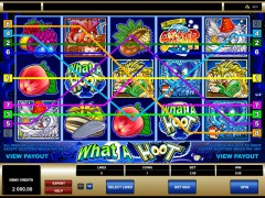 What A Hoot freeslots-77.com Microgaming 3/5