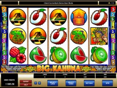 Big Kahuna freeslots-77.com Microgaming 1/5